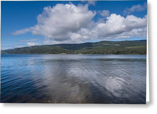 Reflection In Water Greeting Cards - Afternoon Clouds over Big Lagoon Greeting Card by Greg Nyquist