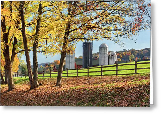 Autumn In The Country Greeting Cards - Afternoon Delight Greeting Card by Bill  Wakeley