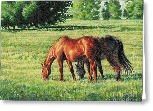 Afternoon Graze Greeting Card by Carrie L Lewis