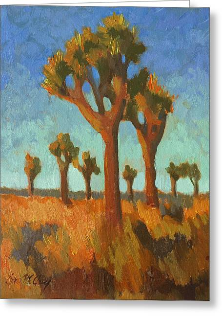 Afternoon Light Greeting Cards - Afternoon Light at Joshua Tree Greeting Card by Diane McClary