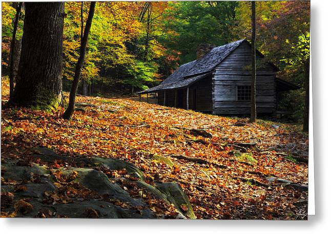 Roaring Fork Road Photographs Greeting Cards - Afternoon Light at the Ogle Place Greeting Card by Phillip Noll Raven Mountain Images