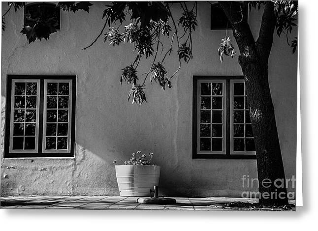 Stellenbosch Greeting Cards - Afternoon Light Greeting Card by Rick Bragan