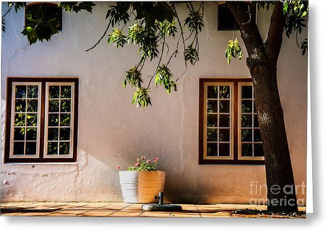 Stellenbosch Photographs Greeting Cards - Afternoon Light Warm Greeting Card by Rick Bragan
