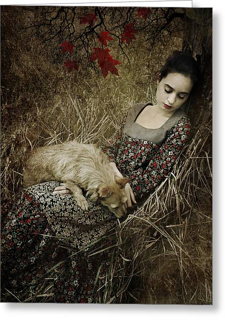 Afternoon Nap Greeting Card by Cambion Art