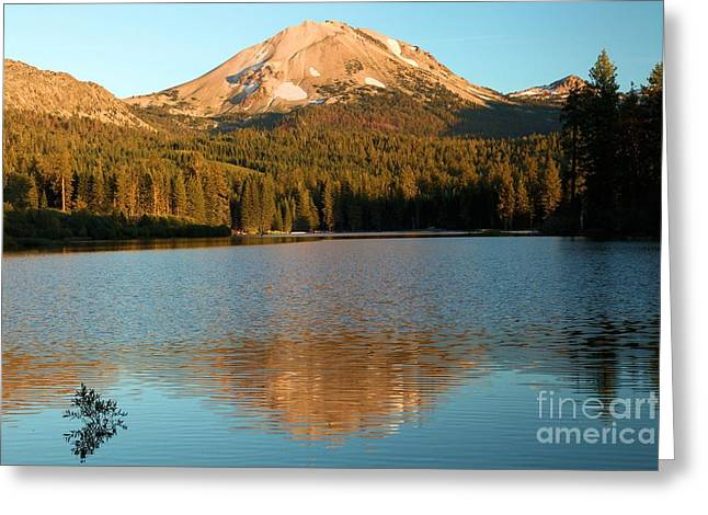 Manzanita Greeting Cards - Afternoon Reflections Greeting Card by Adam Jewell