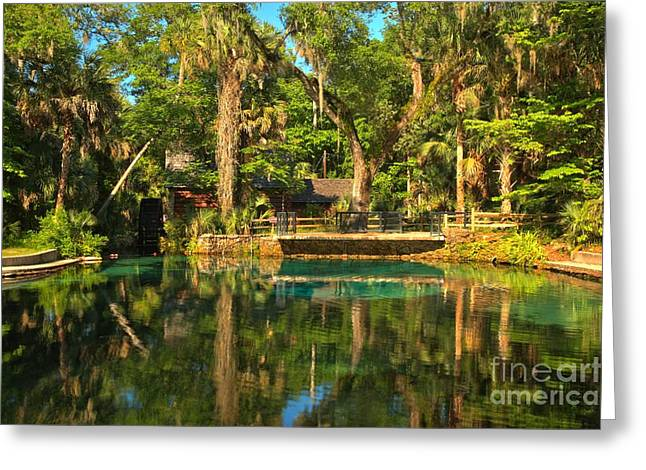 Spring Mill Greeting Cards - Afternoon Reflections At Juniper Springs Greeting Card by Adam Jewell