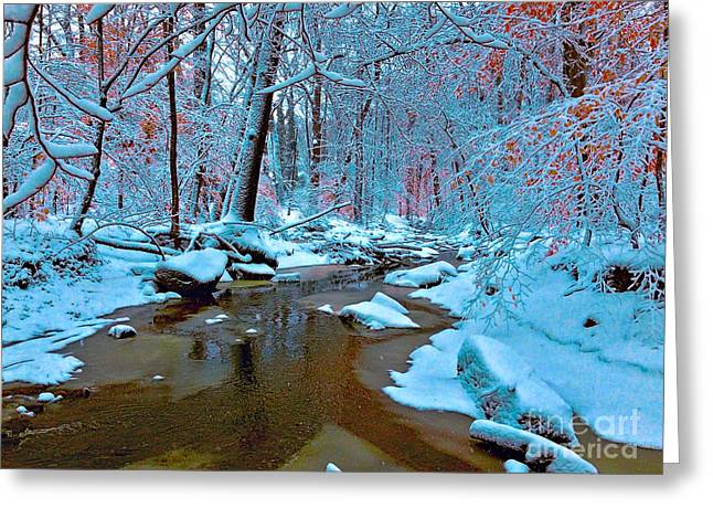 Tress Greeting Cards Greeting Cards - Afternoon Snow Cover Greeting Card by Todd Breitling