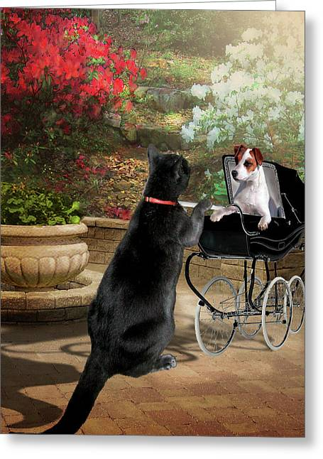 Pet Pictures Greeting Cards - Afternoon stroll Greeting Card by Gina Femrite
