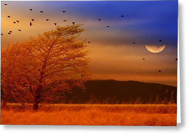 Birds Moon Greeting Cards - Against the Wind Greeting Card by Holly Kempe