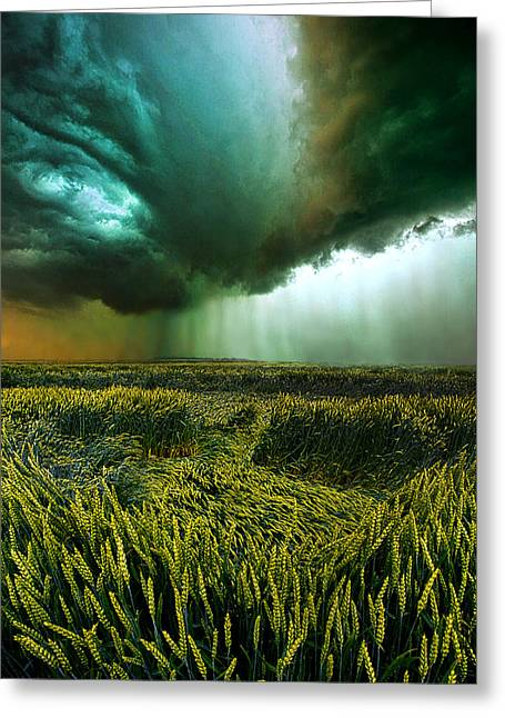 Summer Storm Photographs Greeting Cards - Against the Wind Greeting Card by Phil Koch