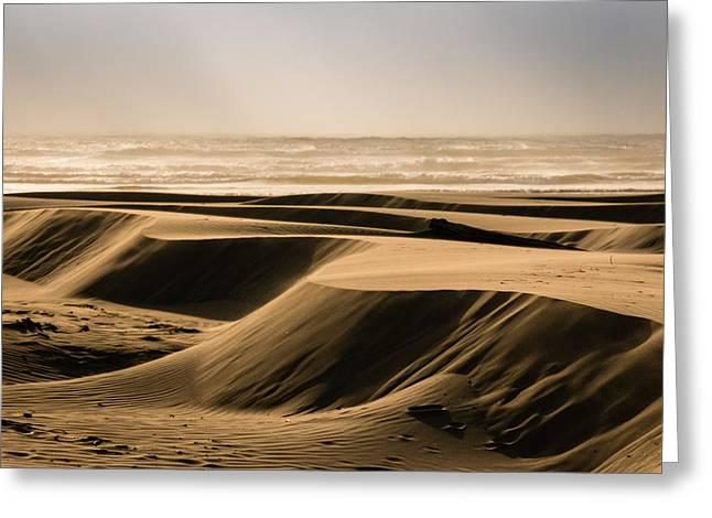 Agate Beach Oregon Greeting Cards - Agate Beach-1 Greeting Card by Claude Dalley