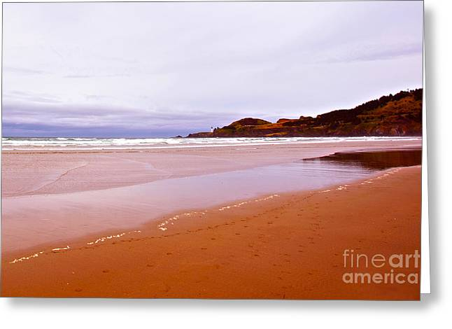 Beach Near Newport Oregon Greeting Cards - Agate Beach Oregon with Yaquina Head Lighthouse Greeting Card by Artist and Photographer Laura Wrede