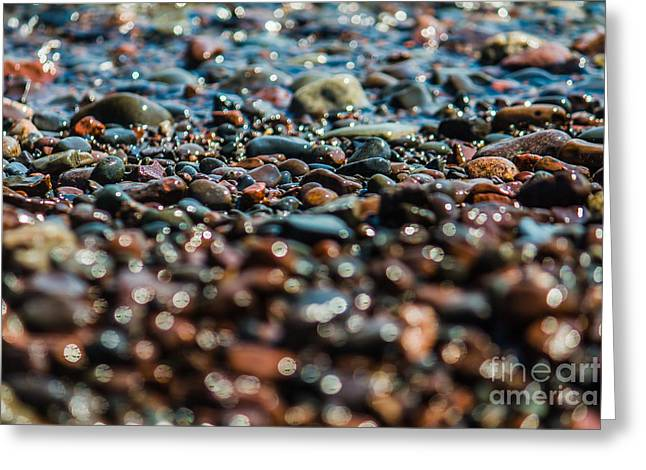 Agate Beach Greeting Cards - Agate Hunting Greeting Card by CJ Benson
