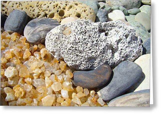 Agate Beach Greeting Cards - Agate Rock Garden Design art prints Coral Petrified Wood Greeting Card by Baslee Troutman