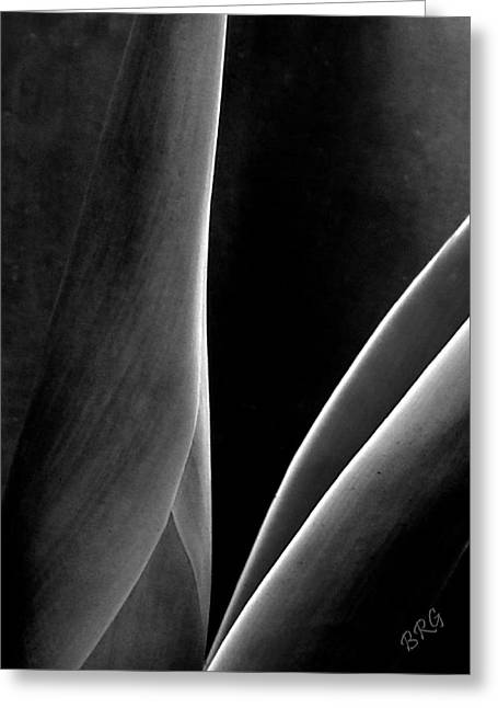 Agave Greeting Card by Ben and Raisa Gertsberg