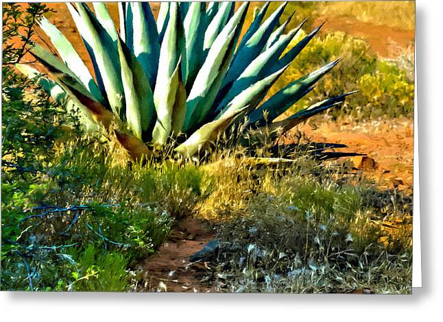 Chihuahua Artwork Greeting Cards - Agave in Secret Mountain Wilderness West of Sedona Greeting Card by  Bob Johnston
