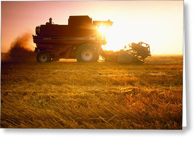 Agriculture - A Combine Harvests Wheat Greeting Card by Mirek Weichsel