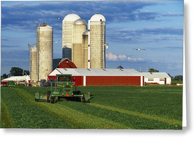 Dairy Barn Greeting Cards - Agriculture - A Windrower Cuts Greeting Card by Rod Patterson