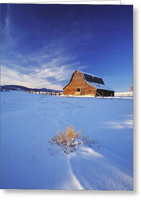 Old Barns Greeting Cards - Agriculture - An Old Rustic Weather Greeting Card by Chuck Haney
