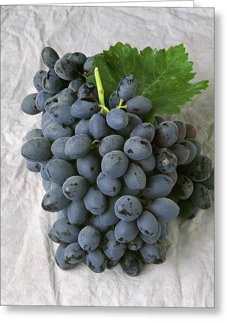 Grape Clusters Greeting Cards - Agriculture - Autumn Royal Black Table Greeting Card by Ed Young