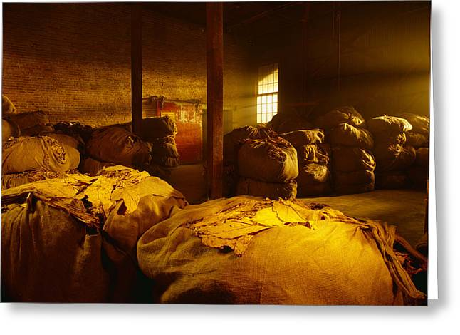 Bale Greeting Cards - Agriculture - Bales Of Dried Tobacco Greeting Card by R. Hamilton Smith