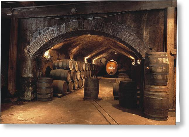 Agriculture - Buena Vista Wine Caves Greeting Card by Gerald French