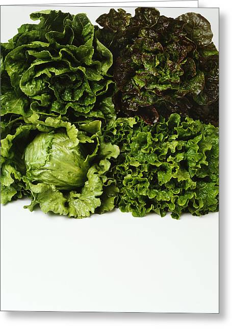 Agriculture - Heads Of Romaine, Red Greeting Card by Ed Young