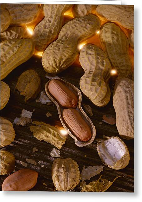 Maturity Greeting Cards - Agriculture - Mature Peanuts On Wood Greeting Card by John Wigmore