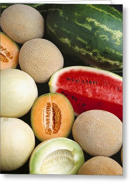 Interior Still Life Greeting Cards - Agriculture - Mixed Melons, Watermelon Greeting Card by Ed Young