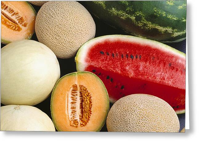 Agriculture - Mixed Melons, Watermelon Greeting Card by Ed Young