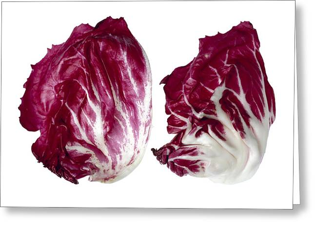 Salad Mix Greeting Cards - Agriculture - Radicchio Leaves Closeup Greeting Card by Ed Young