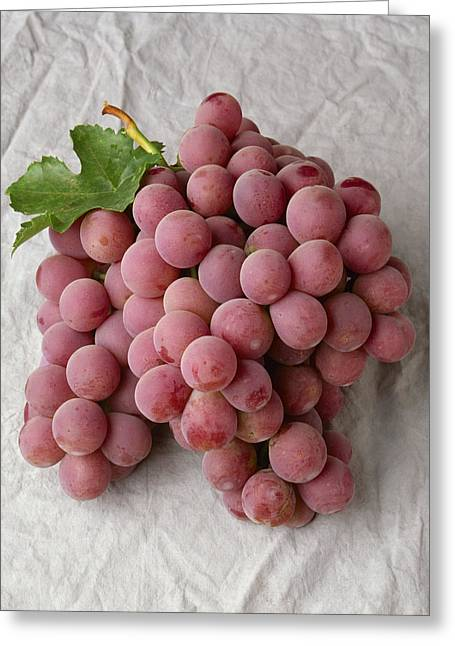 Grape Clusters Greeting Cards - Agriculture - Red Globe Table Grape Greeting Card by Ed Young