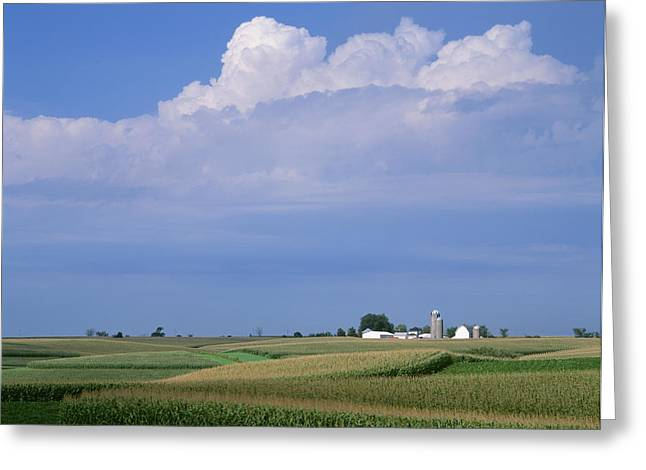Agriculture - Undulating Fields Greeting Card by R. Hamilton Smith