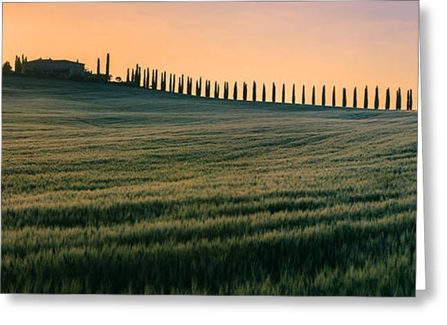 Acryl Greeting Cards - Agriturismo Poggio Covili - Tuscany - Italy Greeting Card by Henk Meijer Photography