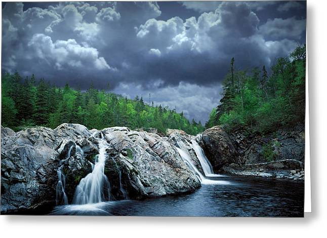Randy Greeting Cards - Aguasabon River Mouth Greeting Card by Randall Nyhof