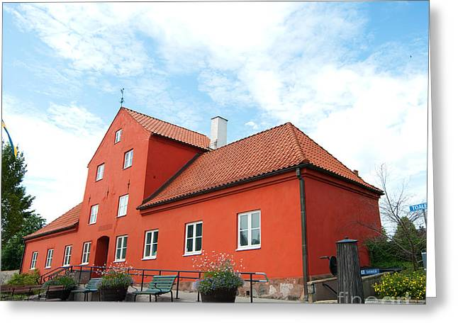 Residential Structure Greeting Cards - Ahus museum 01 Greeting Card by Antony McAulay