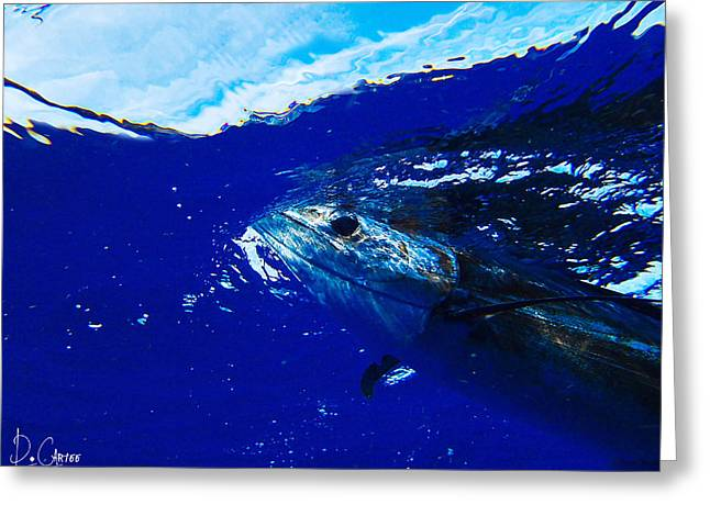 Swordfish Greeting Cards - Aim for the Sky Greeting Card by David Cartee