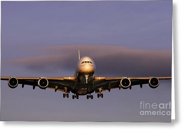 A380 Greeting Cards - Airbus A380 Greeting Card by Colin Woods