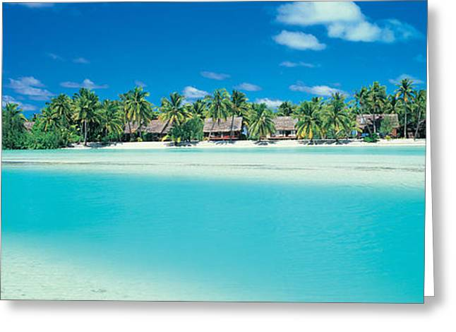 Tree Lines Greeting Cards - Aitutaki Atoll, Cook Islands, New Greeting Card by Panoramic Images