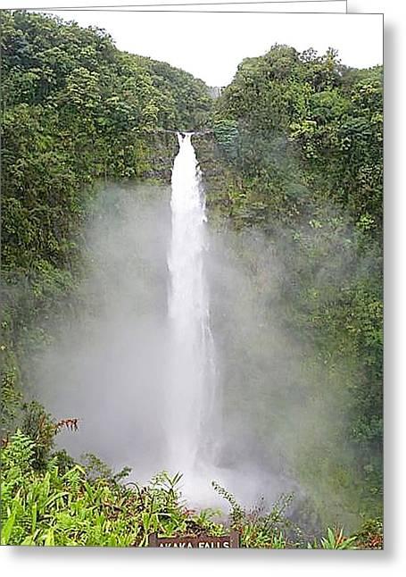 Hawaii Pyrography Greeting Cards - Akaka Falls  Hawaii Greeting Card by DUG Harpster