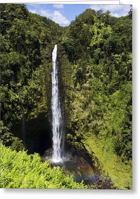 Akaka Falls Greeting Card by Mike Herdering