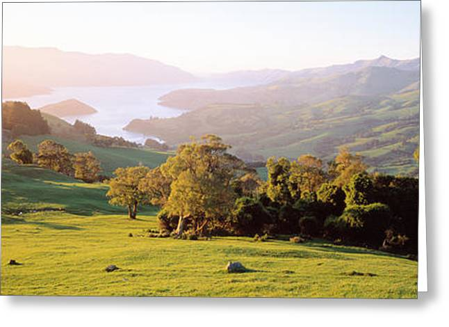Scenic Farm Greeting Cards - Akaroa Harbor Canterbury New Zealand Greeting Card by Panoramic Images