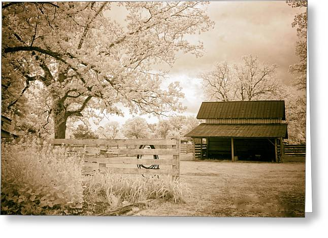Wooden Shed Greeting Cards - Alabama Farm Greeting Card by Mountain Dreams