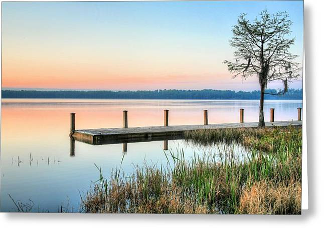 Alabama Greeting Cards - Alabama The Beautiful Greeting Card by JC Findley