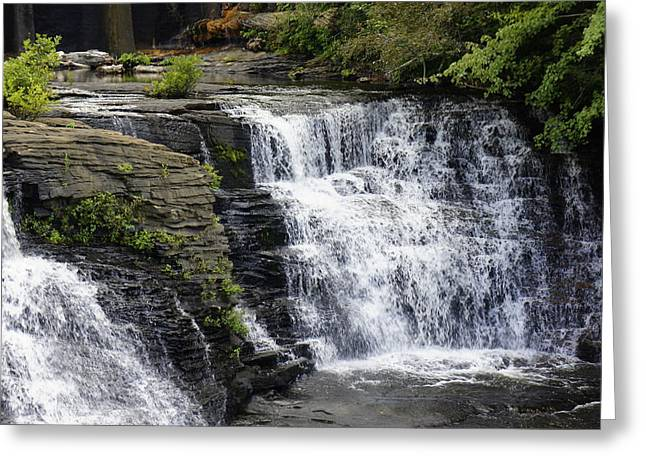 Alga Greeting Cards - Alabama Waterfall Greeting Card by Laurie Perry
