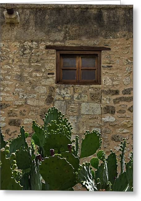 Alamo Window Greeting Card by Jemmy Archer