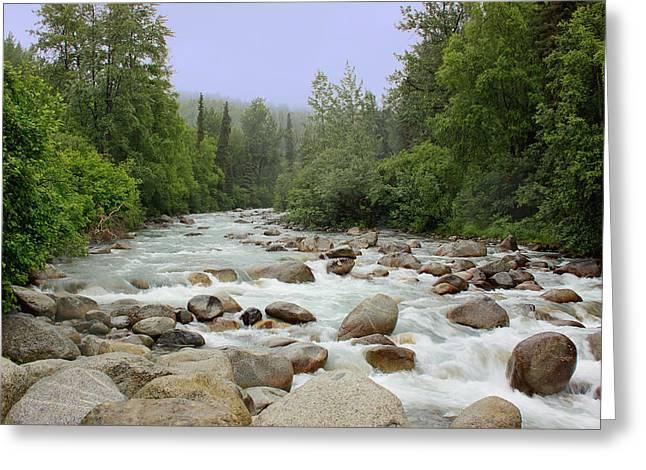 Alaska - Little Susitna River Greeting Card by Kim Hojnacki