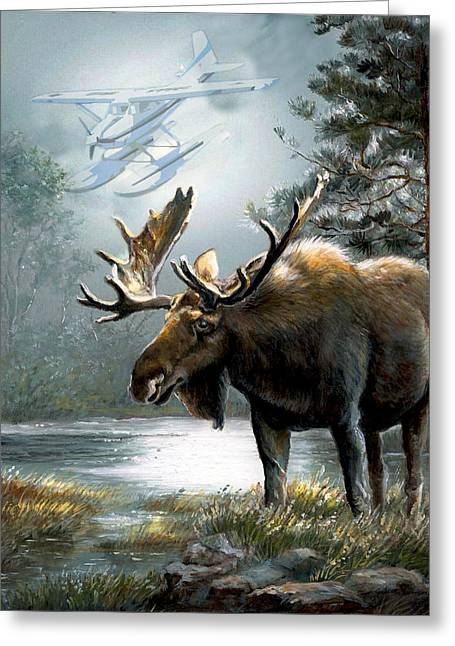 Moo Moo Greeting Cards - Alaska moose with floatplane Greeting Card by Gina Femrite