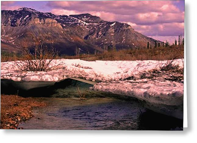 Fineartamerica Mixed Media Greeting Cards - Alaska Mountains Snow and Stream Greeting Card by Diane Strain