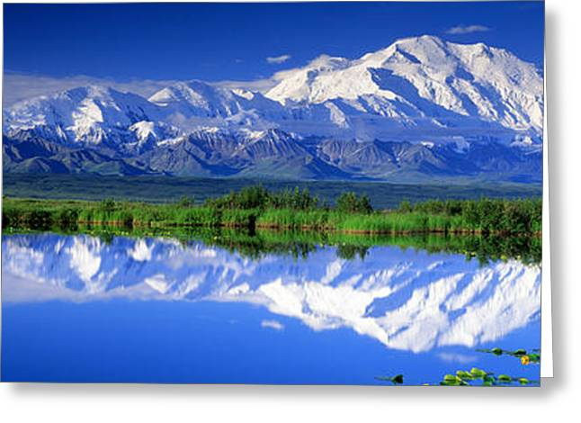 Snow Covered Field Greeting Cards - Alaska Range, Denali National Park Greeting Card by Panoramic Images